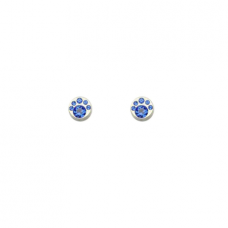 """Magnetiniai auskarai """"Mėlynas grožis"""""""